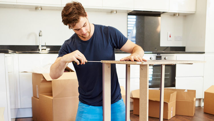 ASSEMBLY OF FURNITURE OR ART OF CREATION