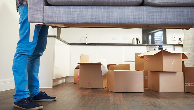Importance of Hiring a Moving Company